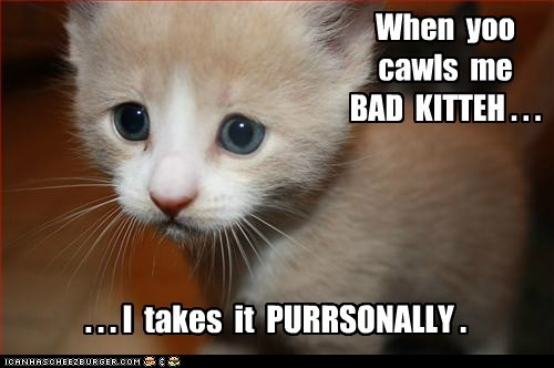 Lolcats: When  yoo  cawls  me   BAD  KITTEH . . .