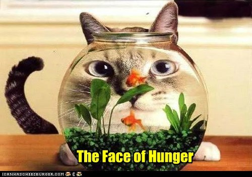 The Face of Hunger
