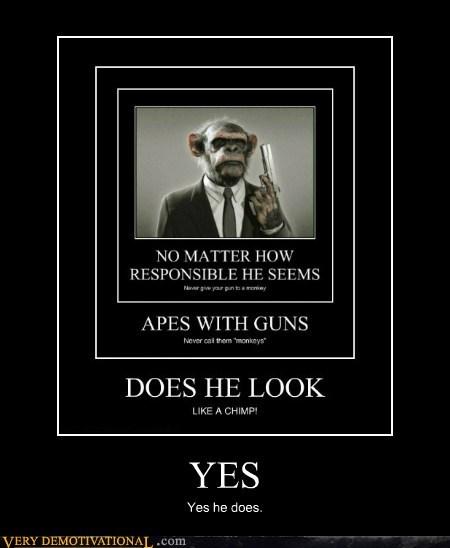 chimp,gun,pulp fiction
