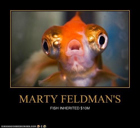 MARTY FELDMAN'S