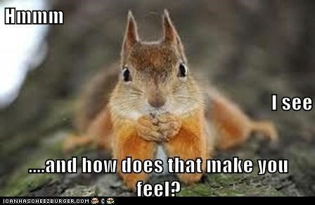 concerned,how does that make you feel,listening,psychiatrist,squirrel