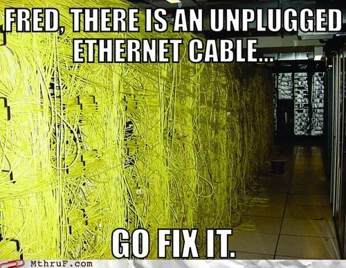 server room,ethernet cables,fred,monday thru friday,g rated