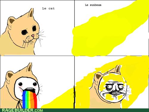 Meow Gusta