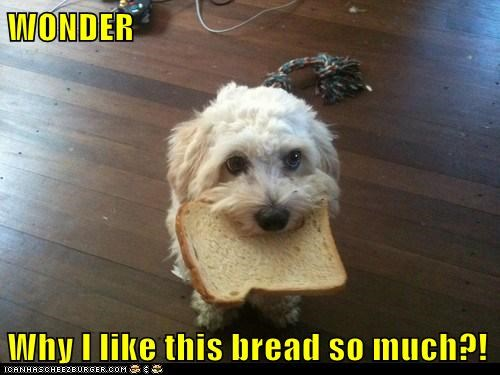 WONDER  Why I like this bread so much?!
