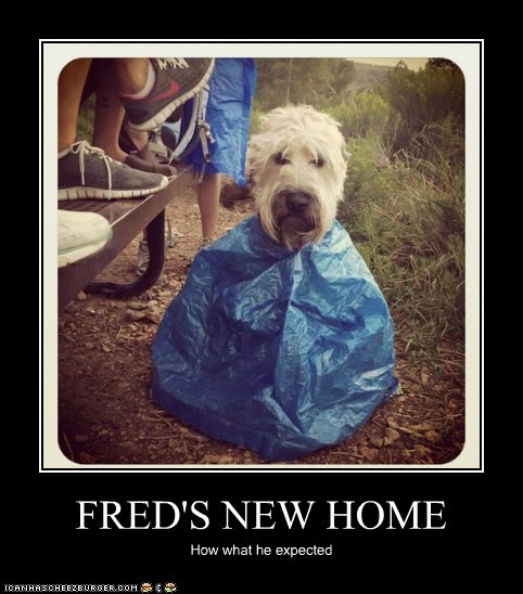 FRED'S NEW HOME