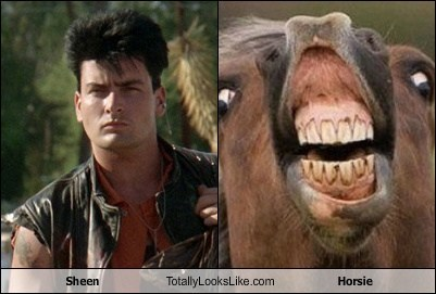 Sheen Totally Looks Like Horsie