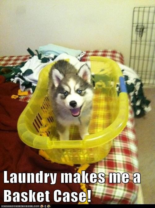 Laundry makes me a Basket Case!