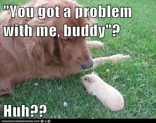 """You got a problem with me, buddy""?  Huh??"