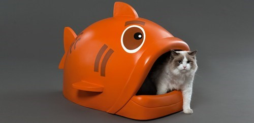 The Daily What: Giant Fish Litter Box of the Day