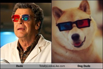 Dude Totally Looks Like Dog Dude