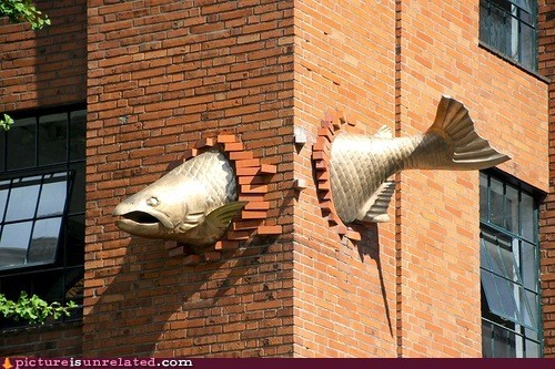 There's Something Fishy About That Building