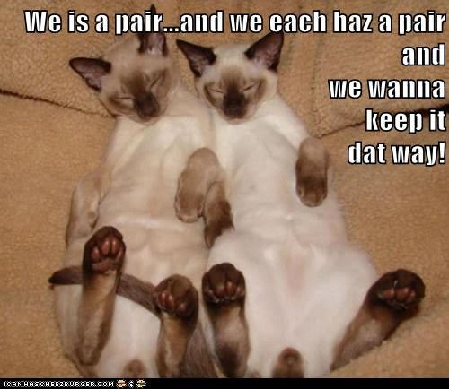 We is a pair...and we each haz a pair and                                                                        we wanna                                                             keep it                                                            dat wa