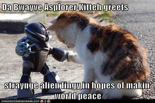 Da Bwayve Asplorer Kitteh greets  straynge alien fingy in hopes of makin' world peace