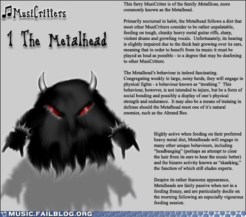 Beware the Metalhead!