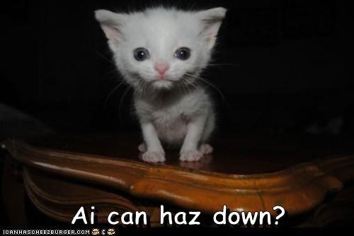 Ai can haz down?
