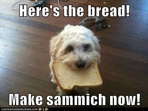 Here's the bread!  Make sammich now!