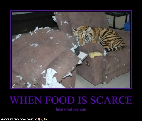 WHEN FOOD IS SCARCE