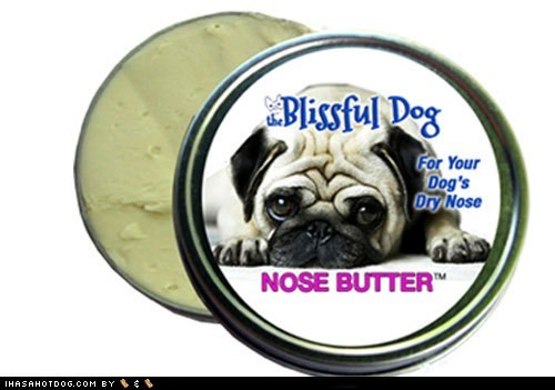 goggie swag,moisturizer,nose,pug,shea butter
