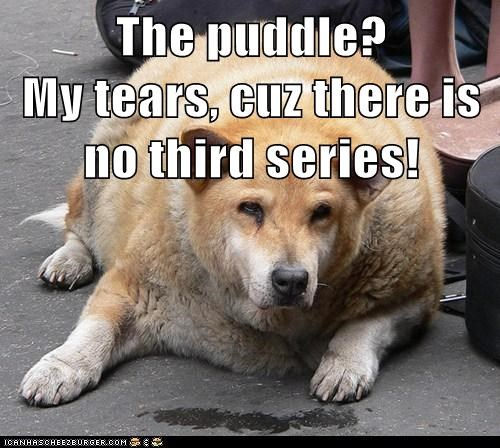 The puddle?                         My tears, cuz there is no third series!