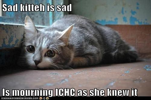 Sad kitteh is sad  Is mourning ICHC as she knew it