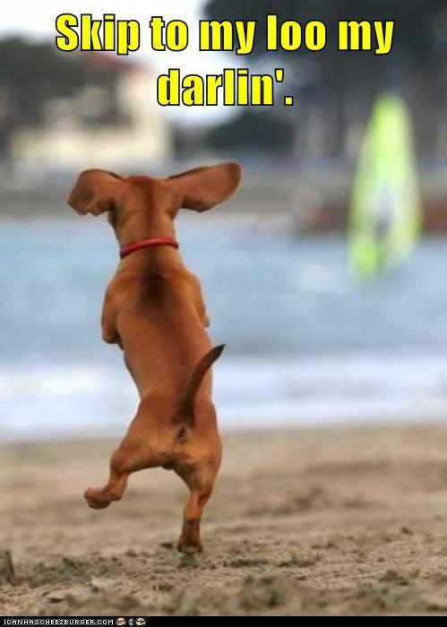 Skip to my loo...