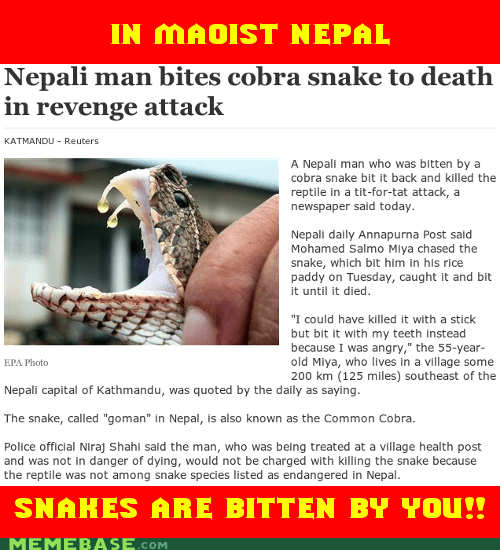 bite,man,maoist,nepal,snake,Soviet Russia