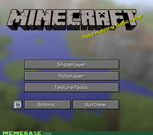 What The Hell Minecraft?