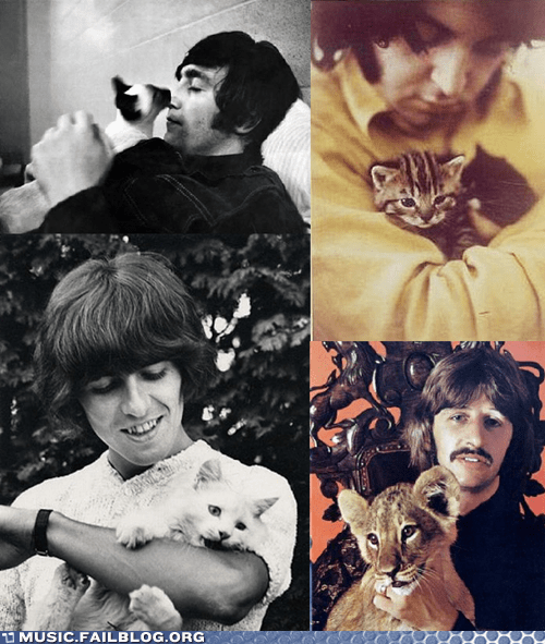Just Some Pics of the Beatles With Cats