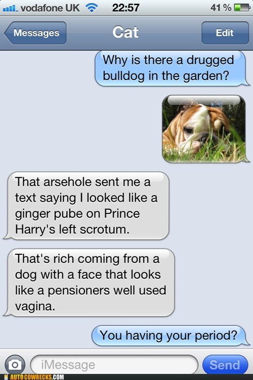 The Cat and Text from Dog