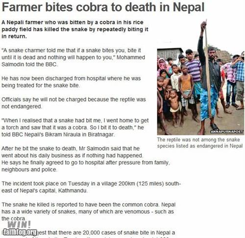 BAMF,cobra,completely relevant news,nepal,snake,world news