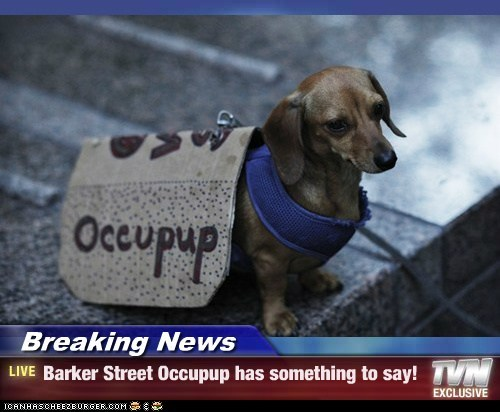 Breaking News - Barker Street Occupup has something to say!