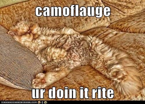 camoflauge  ur doin it rite