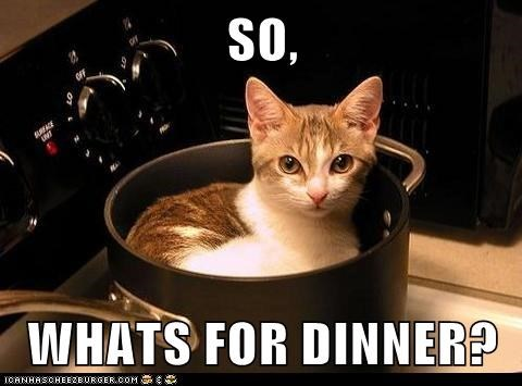SO,  WHATS FOR DINNER?