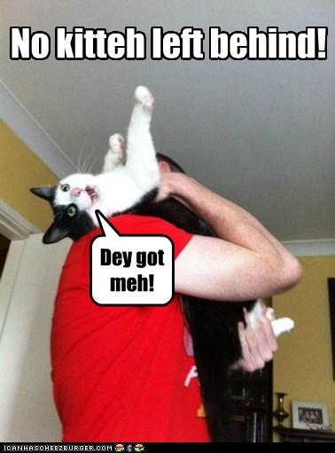 No kitteh left behind!