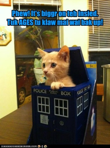 captions,Cats,claw,doctor who,reference,tardis,up
