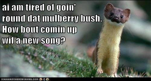 ai am tired of goin'                                                        round dat mulberry bush.                                                 How bout comin up                                                wif a new song?