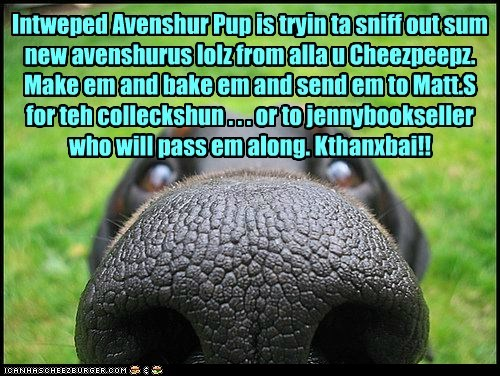 Intweped Avenshur Pup needz ur lolz!!