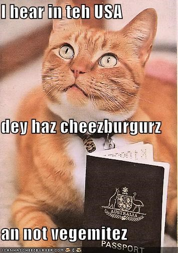I hear in teh USA  dey haz cheezburgurz an not vegemitez
