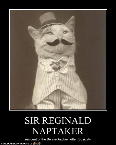 SIR REGINALD NAPTAKER