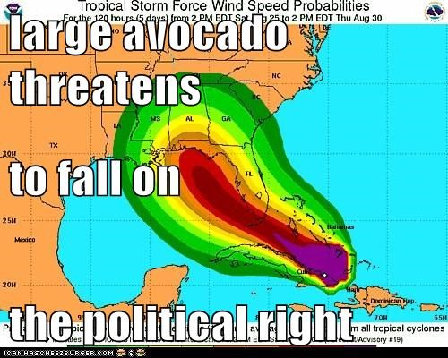 large avocado threatens to fall on  the political right