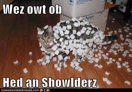 Wez owt ob   Hed an Showlderz