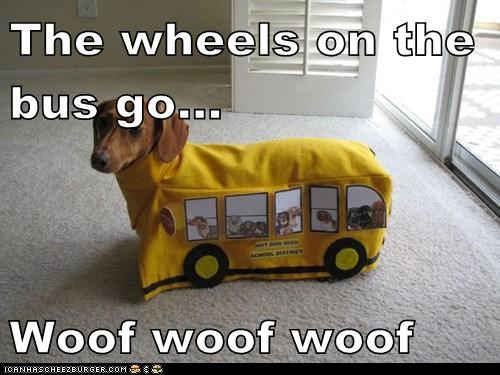 The wheels on the bus go...  Woof woof woof