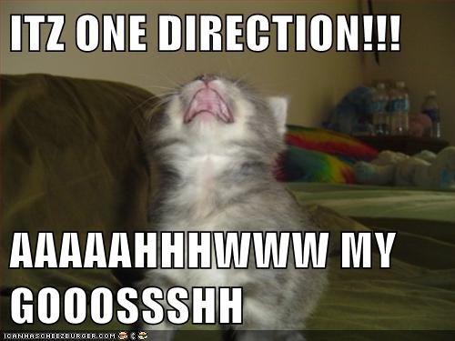ITZ ONE DIRECTION!!!