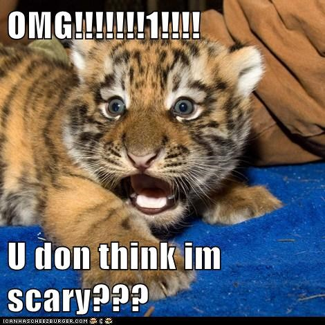 OMG!!!!!!!1!!!!  U don think im scary???