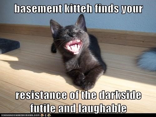 basement cat,captions,Cats,dark side,futile,laugh