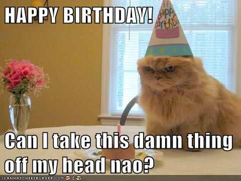HAPPY BIRTHDAY!  Can I take this damn thing off my head nao?