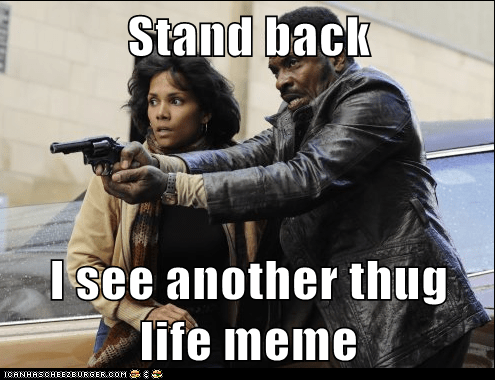 Stand back  I see another thug life meme
