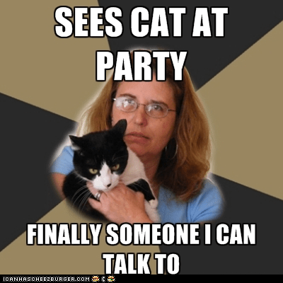 Awkward,cat ladies,Cats,parties,Sad,socially awkward
