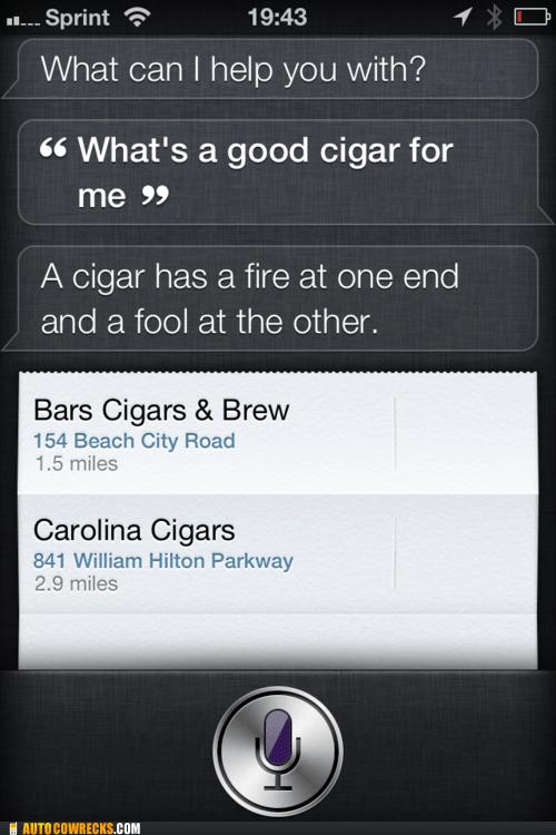 cigars,judging me,siri,smoke shop,smoking