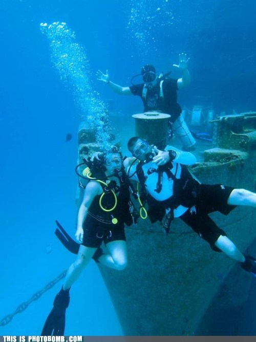 Photobomb Level: Scuba